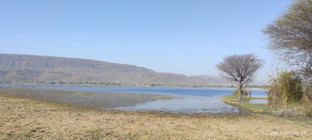 Backwater of Jaisamand Lake