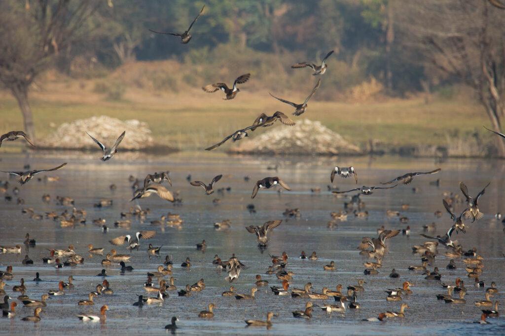 Lake near Jagat